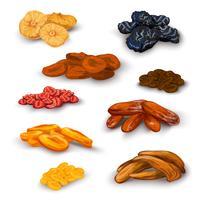 Set di icone di frutta secca vettore