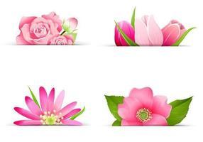 Pacchetto di fiori rosa banner vettoriale