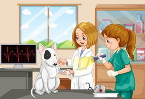 Medico veterinario e infermiera che aiuta un cane