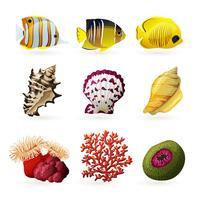 Icone di fauna marina vettore