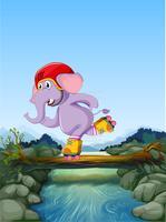 Elepehant gioca a roller skate