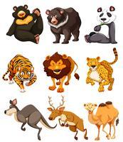 Set di caratteri di animali selvatici vettore