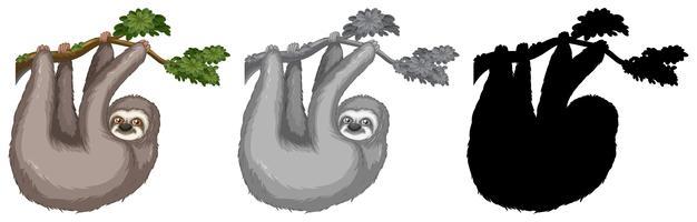 Insieme del bradipo che appende sul ramo di un albero