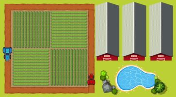 Scena aerea con terreni agricoli e fienili