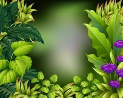 Disegno del bordo con foglie verdi vettore