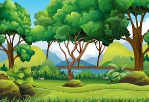 Scena della foresta con fiume e alberi vettore