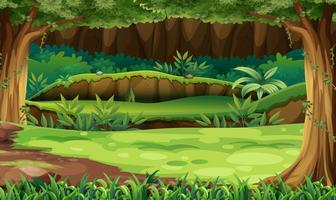 Scena della foresta con alberi e campo vettore