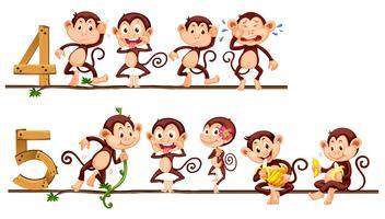 Conteggio numero quattro e cinque con le scimmie