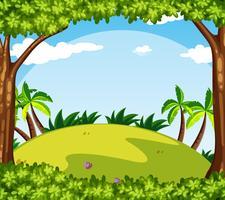 Scena di sfondo con alberi sulla collina
