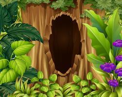 Scena della foresta con il foro nell'albero vettore