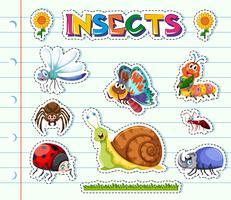 Disegno adesivo con diversi tipi di insetti vettore