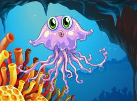 Meduse carine sotto l'oceano