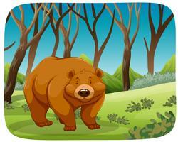 Un orso grizzly nella foresta