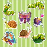 Set di adesivi per diversi tipi di insetti vettore
