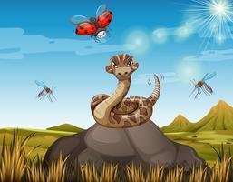 Serpente selvaggio sulla roccia con molti insetti vettore