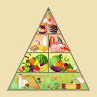 Concetto di piramide alimentare vettore