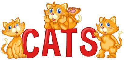 Disegno di carattere con gatti di parole con tre gatti di zenzero vettore