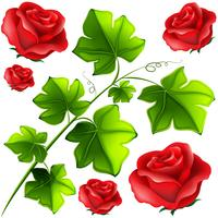 Foglie verdi e rose rosse vettore