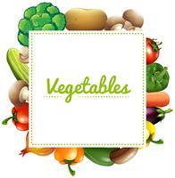 Vari tipi di verdure vettore