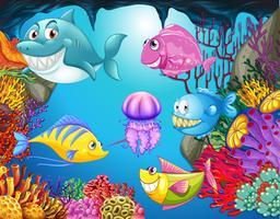 Molti animali marini nell'oceano vettore