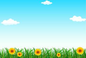 Un cielo blu chiaro vettore