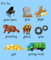 Molte parole per l'alfabeto G