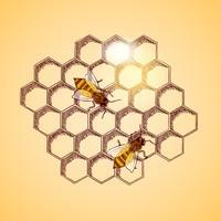 API di miele e sfondo a nido d'ape vettore