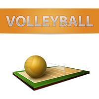 Emblema di palla e campo di pallavolo vettore