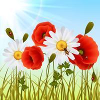 Carta da parati senza giunte dell'erba del papavero vettore