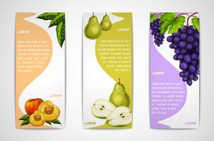 Raccolta di banner di frutta biologica mista vettore
