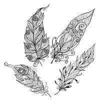 Set di doodle di piume vettore
