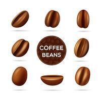 Insieme di concetto di chicchi di caffè
