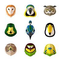 Set di uccelli selvatici vettore