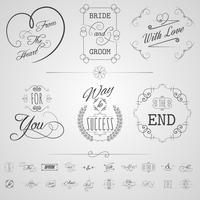 Set di elementi di calligrafia vettore