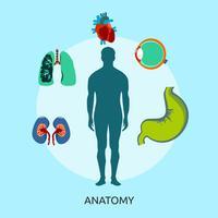 Disegno dell'illustrazione concettuale di anatomia vettore