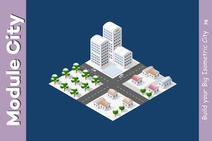 Il modulo isometrico è area landscape vettore