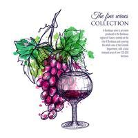 Vino rosso con uva vettore