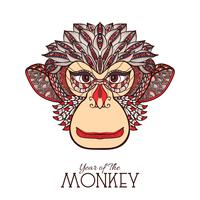 faccia color scimmia