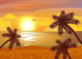 Poster tramonto spiaggia tropicale vettore