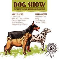 I cani mostrano l'illustrazione