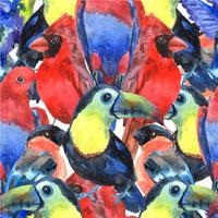 Modello senza cuciture colorato uccelli tropicali