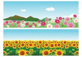 Pacchetto di sfondi vettoriali di fiori estivi