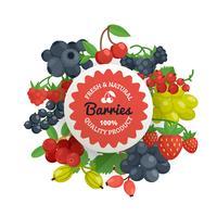 Emblema piatto di qualità di frutti di bosco