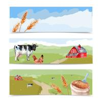 Set di banner di fattoria vettore