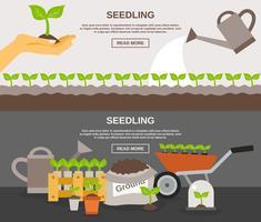 Set di banner di semenzale