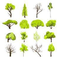 Set di icone dell'albero di schizzo
