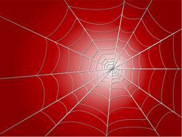 spider wed vettore