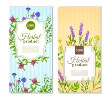 Banner di erbe e fiori selvatici vettore