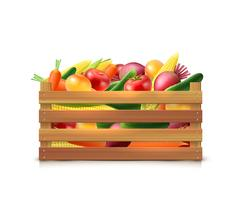 Modello di raccolta di verdure vettore