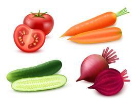 Set di verdure realistiche vettore